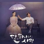 エル主演韓国ドラマ「ただひとつの愛」あらすじ感想レビュー *ネタバレなし